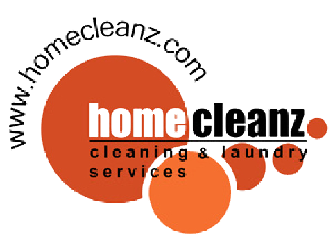 Image result for home cleanz