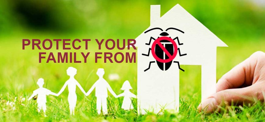 Protect Your Family And Home From Cockroaches